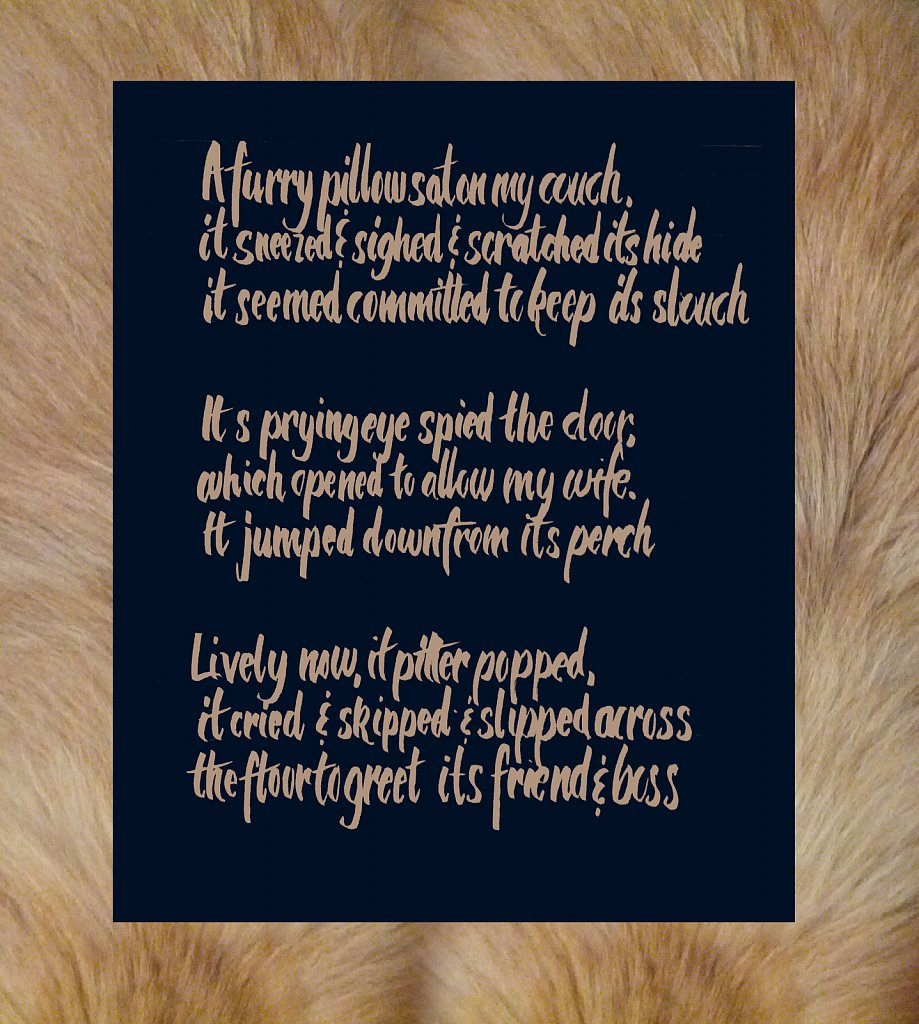 Pekingese Poem
