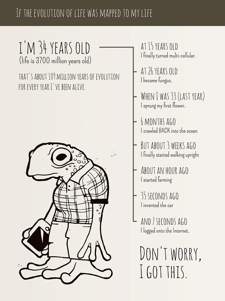 Life Timeline