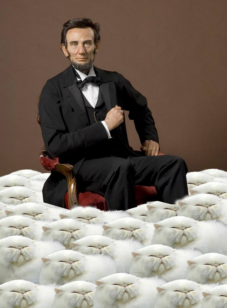 Lincoln and his cats