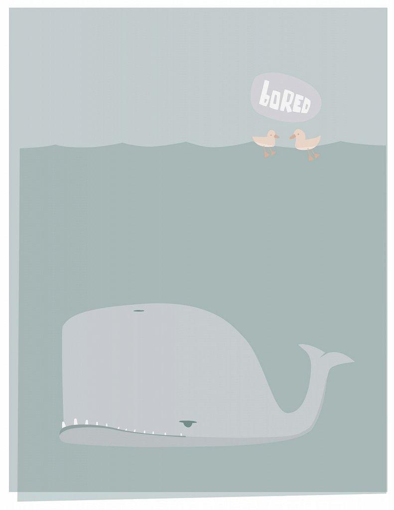 Bored Whale